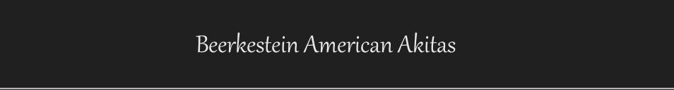 Beerkestein American Akita